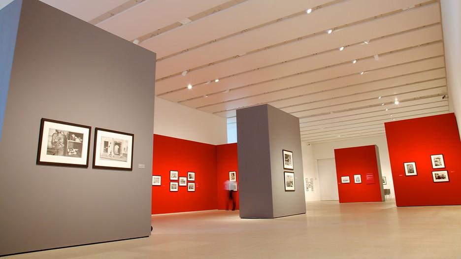 Tampa Museum Of Art In Tampa Florida Expedia
