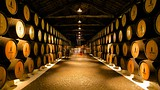 Sandeman Cellars - Porto (en omgeving) - Tourism Media