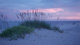 Orange Beach - Gulf Shores - Gulf Shores and Orange Beach Tourism