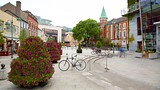Crawford Art Gallery - Cork - Tourism Media