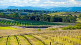 Hunter Valley - Australia - New Zealand and the South Pacific - Tourism Media