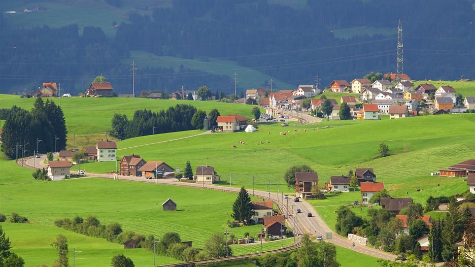 Swiss package deals