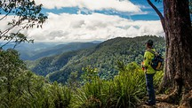 Barrington Tops National Park - Hunter Valley