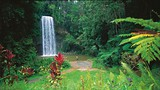 Atherton Tablelands - Peter Lik/Tourism and Events Queensland