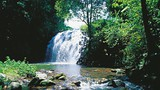 Atherton Tablelands - Karl Seelig/Tourism and Events Queensland