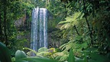 Atherton Tablelands - Tourism and Events Queensland