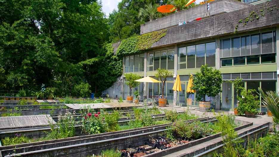 Botanical garden bern attraction for Au jardin restaurant botanic gardens
