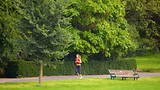 Preston Park - East Sussex - Tourism Media