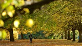 Showing item 63 of 90. Kensington Gardens - London - Tourism Media
