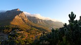 Table Mountain - Afrika och Indiska oceanen - Tourism Media