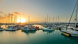 Abell Point Marina - Airlie Beach - Tourism Media