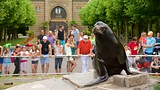 Wilhelma Zoo - Stuttgart - Tourism Media