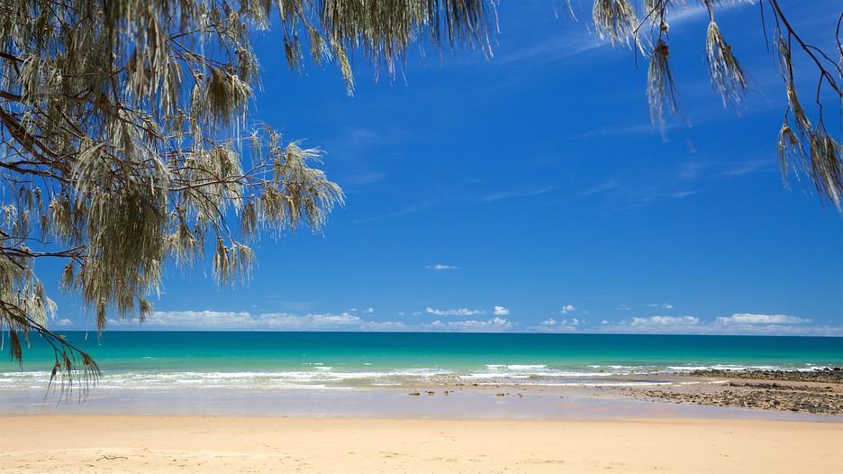 cheap sex vacations Bundaberg