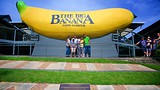 Big Banana Coffs Harbour - Coffs Harbour - Tourism Media