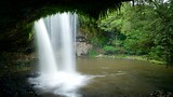 Killen Falls - Byron Bay - Tourism Media