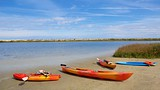Anastasia State Park - St. Augustine (y alrededores) - Tourism Media