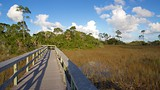 Mahogany Hammock Trail - Everglades National Park - Tourism Media