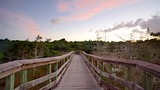Pa-hay-okee Trail - Everglades National Park - Tourism Media