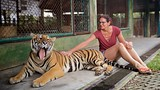 Showing item 66 of 90. Tiger Kingdom Phuket - Phuket - Phang Nga - Tourism Media