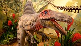 Showing item 45 of 80. National Dinosaur Museum - Canberra - Tourism Media