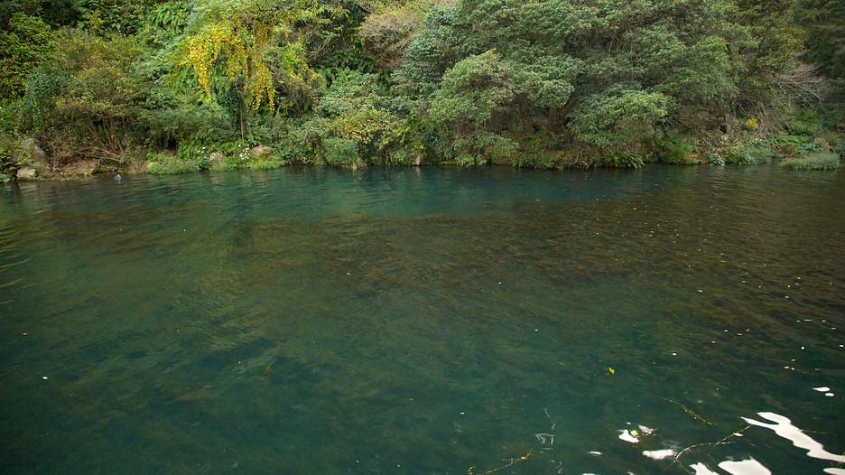 Cheonjiyeon Waterfall  Jeju Island  Tourism Media