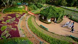 Botanical Gardens - India - Tourism Media