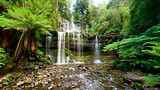 Russell Falls - Mt. Field National Park - Tourism Media