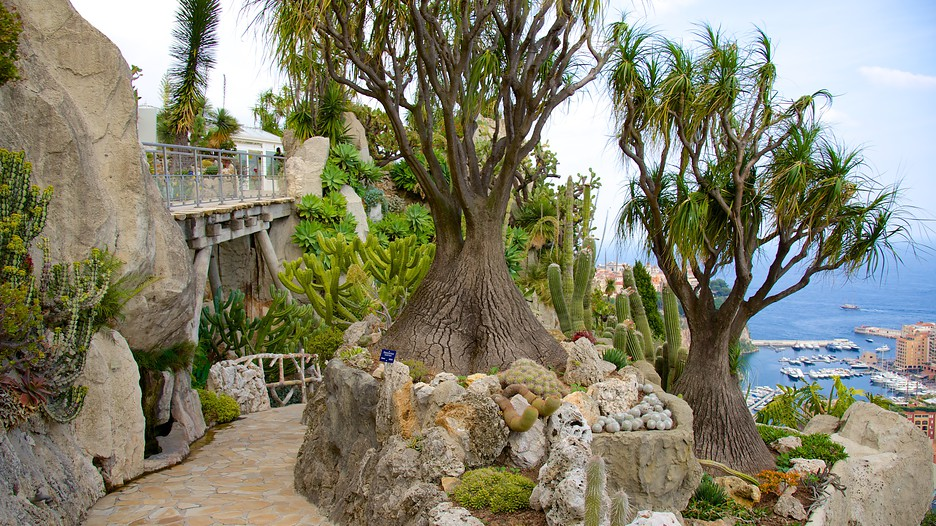 Exotic Garden In Monaco Expedia