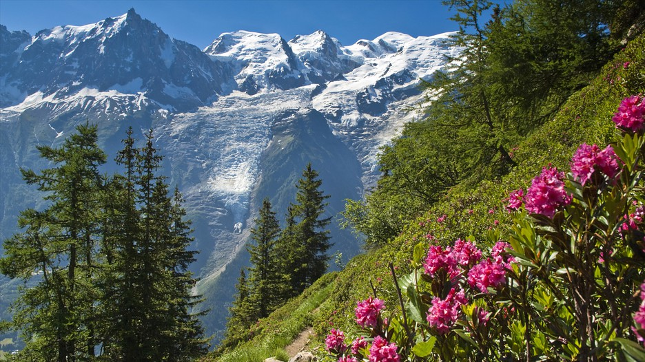 Chamonix Mont Blanc France  city images : Chamonix Mont Blanc France Vacations: Package & Save Up to $500 on ...