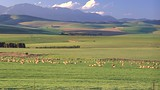 Swellendam - South African Tourism