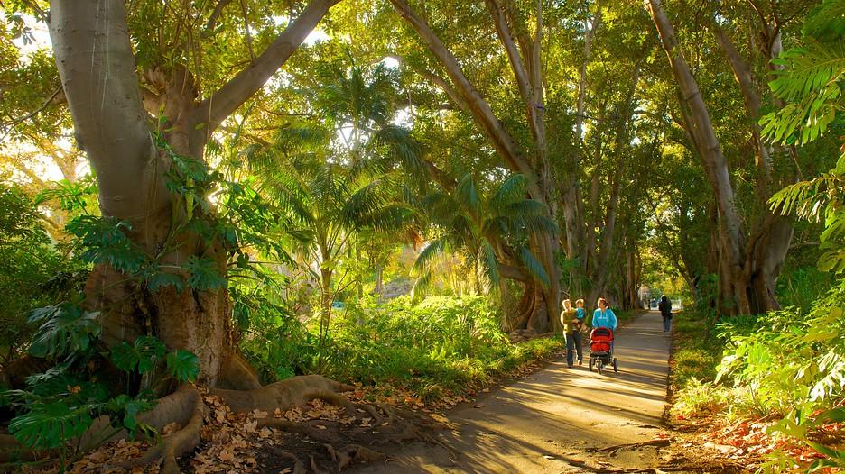 Adelaide botanic gardens in adelaide south australia for Landscaping adelaide north