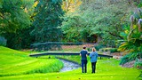 Showing item 27 of 81. Adelaide Botanic Gardens - Adelaide - Tourism Media