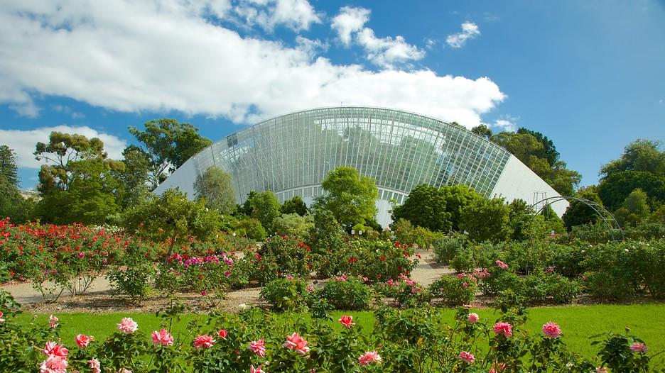 Jardins botaniques d 39 adelaide ad la de for Au jardin botanic gardens