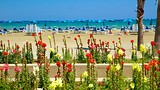 Finikoudes Beach - Cyprus - Tourism Media