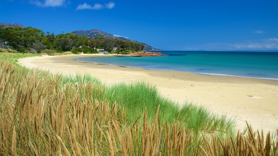 east coast tasmania holidays cheap east coast tasmania holiday