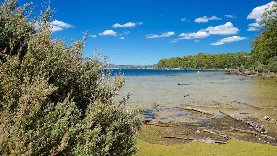 Lake St Clair Holidays Book Cheap Holidays To Lake St Clair And Lake St Clair City Breaks