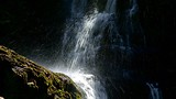 Nelson Falls - West Coast Tasmania - Tourism Media
