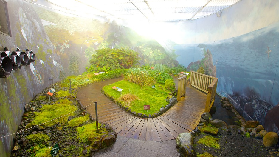 Royal Tasmanian Botanical Gardens Hobart Tourism Media