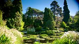 Royal Tasmanian Botanical Gardens - Tasmania - Tourism Media