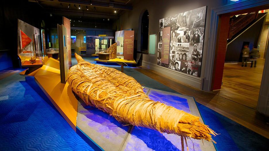 tasmanian museum and art gallery hobart tasmania. Black Bedroom Furniture Sets. Home Design Ideas