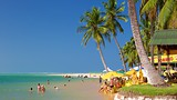 Praia do Gunga - Alagoas (state) - Tourism Media