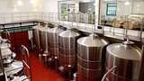 Ravanello Winery - Caxias do Sul - Tourism Media