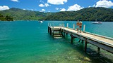 Momorangi Bay - Marlborough - Tourism Media