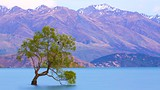 Lake Wanaka - Wanaka - Tourism Media
