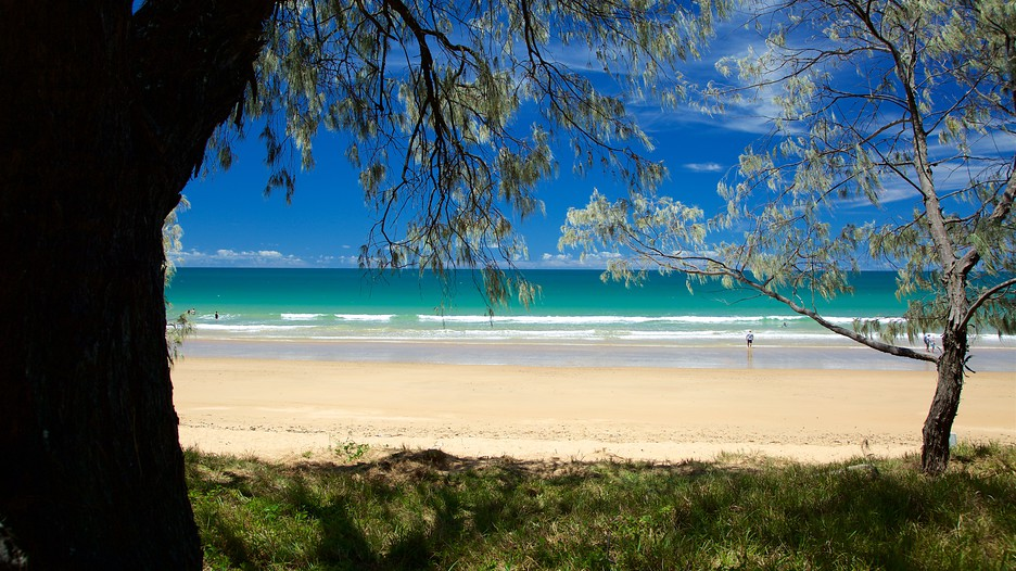 Bargara Australia  city pictures gallery : Bargara Australia Vacations: Package & Save Up to $500 on our Deals ...
