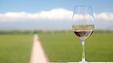 Catena Zapata Winery - Mendoza Wine Region - Tourism Media