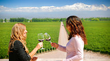 Video: Mendoza Wine Region