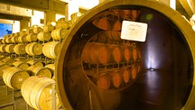 Navarro Correas Winery - Mendoza Wine Region