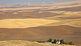 Steptoe Butte State Park - Pullman - Tourism Media