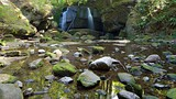 Whatcom Falls Park - Bellingham - Tourism Media